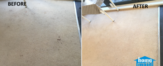 Cleaning makeup stains from a carpet in Kings Cross, London N1C