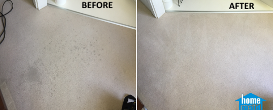 Cleaning of wine stains from a carpet in Halo Building Stratford, London E15