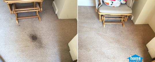 Cleaning a tough carpet stain from a bedroom in Paddington