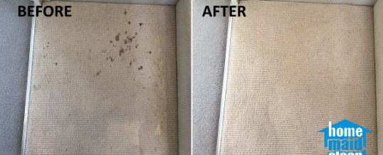 Blood stains carpet cleaning in Westminster, London SW1V