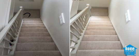 Communal staircase carpet cleaning in Marylebone, London W1G