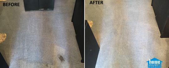 Ink stain carpet cleaning in Bloomsbury, London WC1B