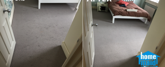 Pet hair removal from a carpet in Chelsea, London SW10