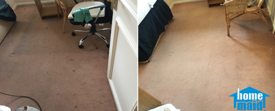 Professional carpet cleaning at the end of tenancy in Pimlico, London SW1V