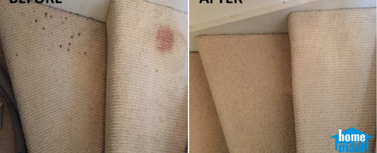 Cleaning blood-stained carpet in Wandsworth, London SW18